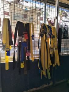 tioman-dive-buddy-diving-equipment-room